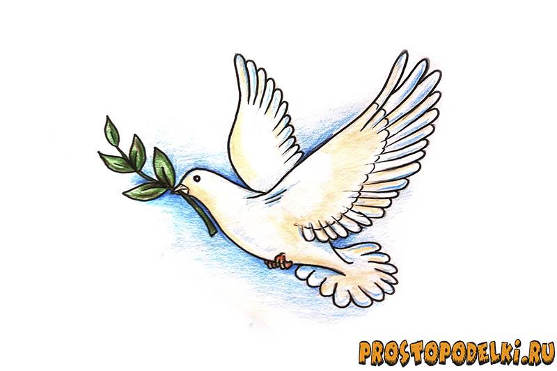 Нарисовать голубя мира-12