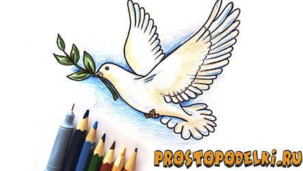 Нарисовать голубя мира